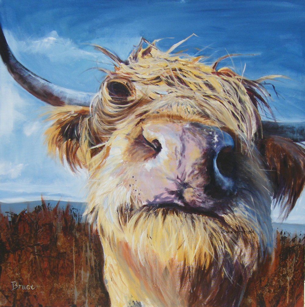 The bruce gallery isle of mull uk for Cow painting print